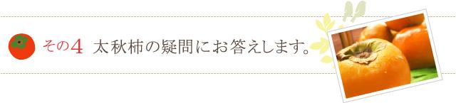太秋柿の疑問にお答えします。