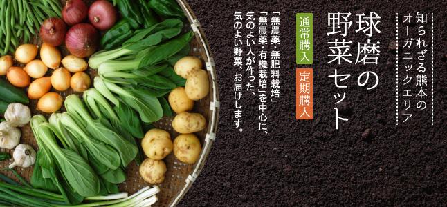 熊本のオーガニックエリア 球磨の野菜セット